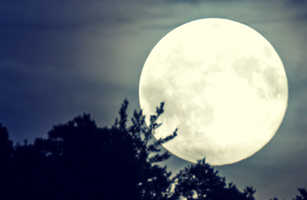 Full Moon Yoga Nidra online e-class